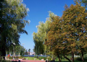 Park Kościuszki w Katowicach – zieleń w centrum miasta